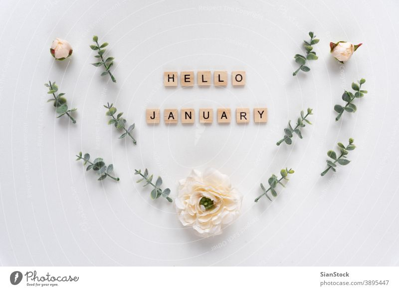 Hello January words on white marble background january hello alphabet concept text greeting wood month wooden message design business year new happy decoration