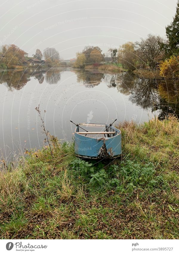 Autumn at the pond with abandoned rowing boat Rowboat Village Agriculture Bavaria Lake Starnberg Fog Farm Old