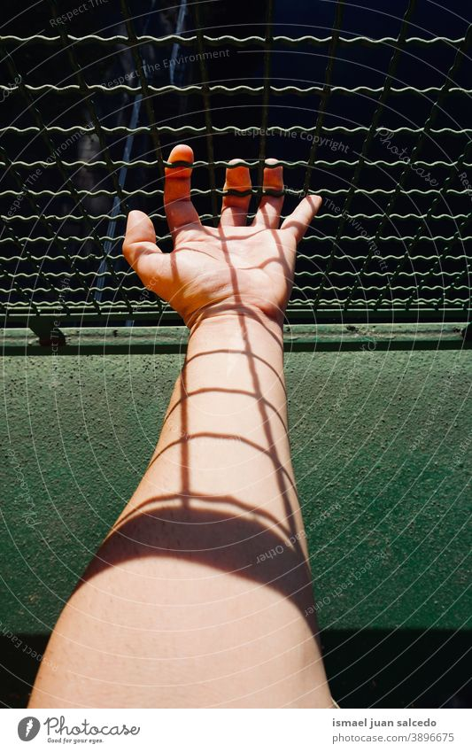 man hand grabbing metallic fence wire security protection human fingers body part person arm Skin Fingers Human being Exterior shot Shadow Palm of the hand