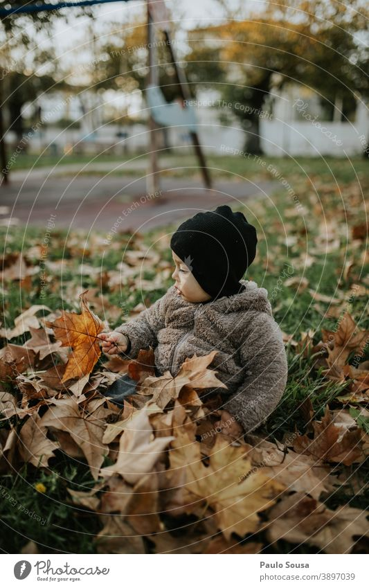 Toddler playing with autumn leaves Child childhood Caucasian 1 - 3 years Human being Colour photo Infancy Exterior shot Happiness Happy Day Lifestyle Joy
