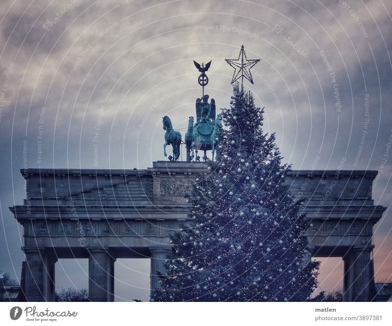 Quadriga follows the star Berlin Brandenburg Gate Capital city Tourist Attraction Downtown Berlin Star (Symbol) Christmas tree Adorned Sky Clouds Twilight