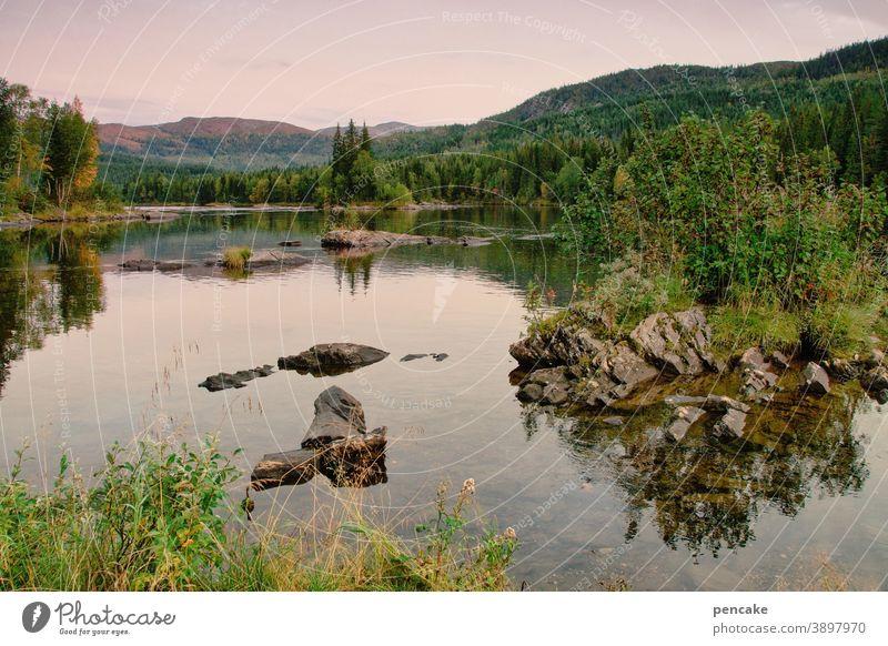 allein, aber nicht einsam Norwegen Landschaft Natur Fjord Felsen Reisen Licht Wasser menschenleer Erholung Urlaub Skandinavien
