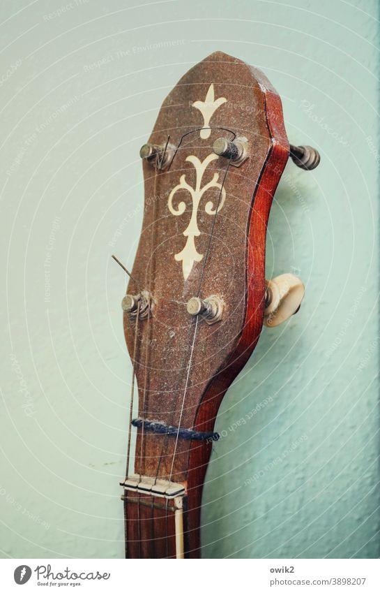 Dusty banjo Banjo Head Musical instrument Plucking instrument Culture Leisure and hobbies Art Sound stringed instrument Make music Detail vertebra Saddle