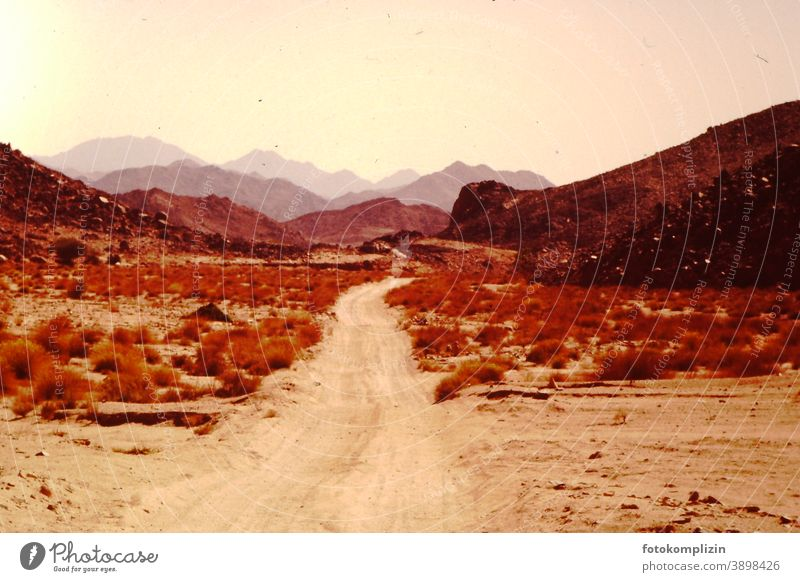 Desert Way Deserted Sand Nature Desert Mountains Sahara Far-off places Landscape Outdoors Lanes & trails warm tranquillity Nostalgia silent Exterior shot