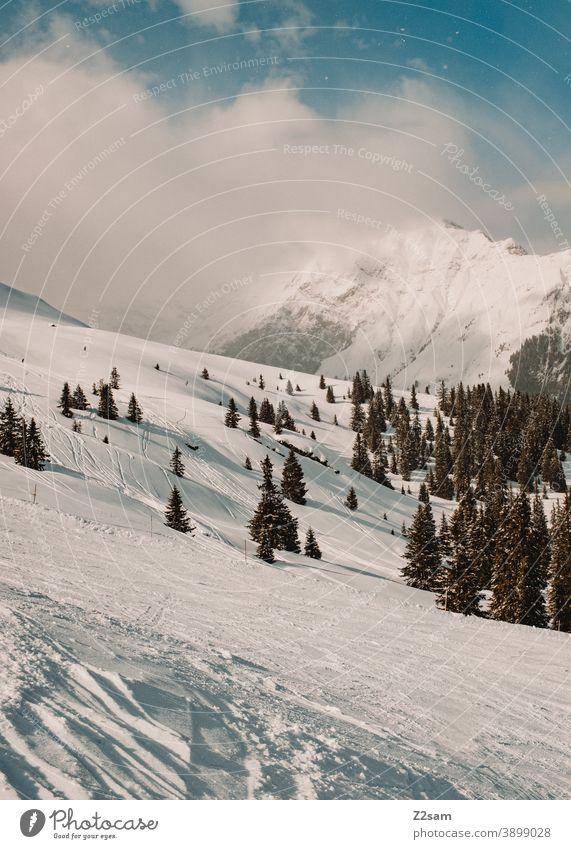 Winterlandschaft im Südtiroler Ratschings winter winterlandschaft ratschings bäume wald schnee skipiste berge alpen wintersport südtirol urlaub italien ferien