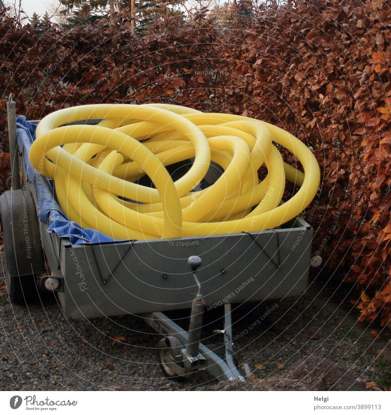 yellow plastic empty tubes are rolled up on a trailer standing in front of a beech hedge Trailer Empty tubes Cable conduit flexible Yellow Civil engineering