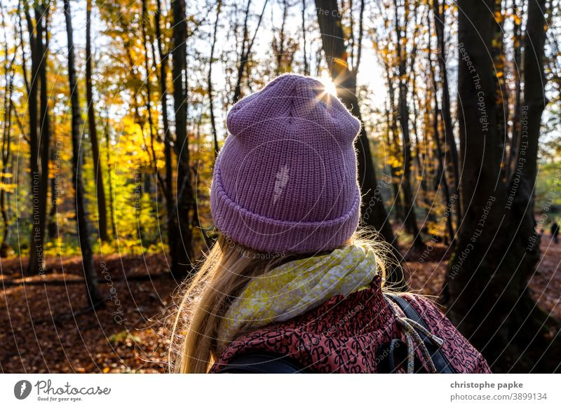 Woman with cap walking in the autumnal forest Cap Forest To go for a walk Autumn Back-light Sunlight Cold Exterior shot Rear view Human being Tree Adults