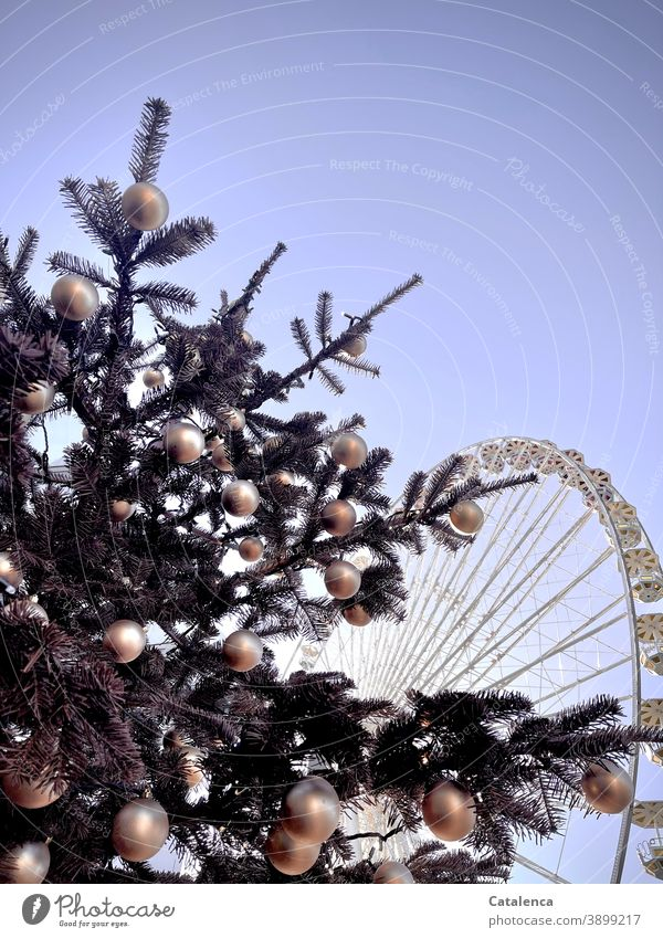 Stillness; Christmas tree in the foreground, behind it an orphaned Ferris wheel | corona thoughts christmas christmas tree christmas ornaments Fir tree