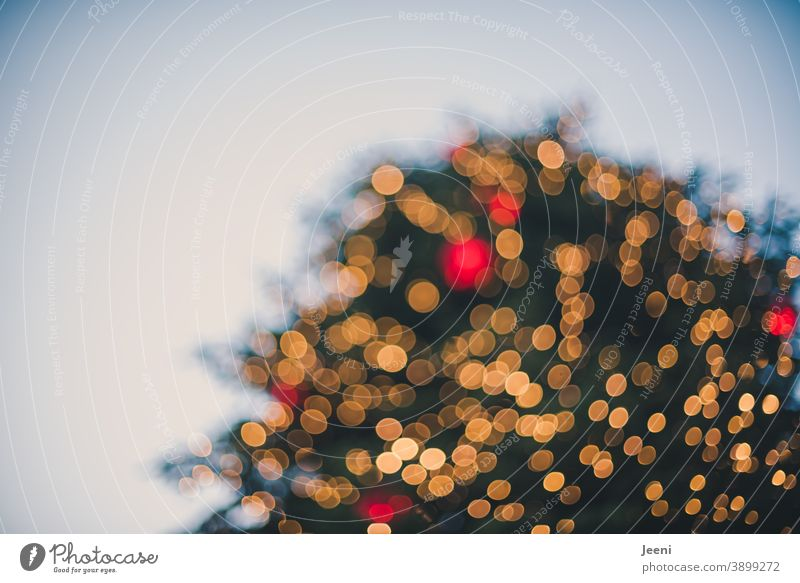 captured from below | big christmas tree on a market place | blurred glittering yellow and red | bokeh of thousands of lights Large Markets Marketplace