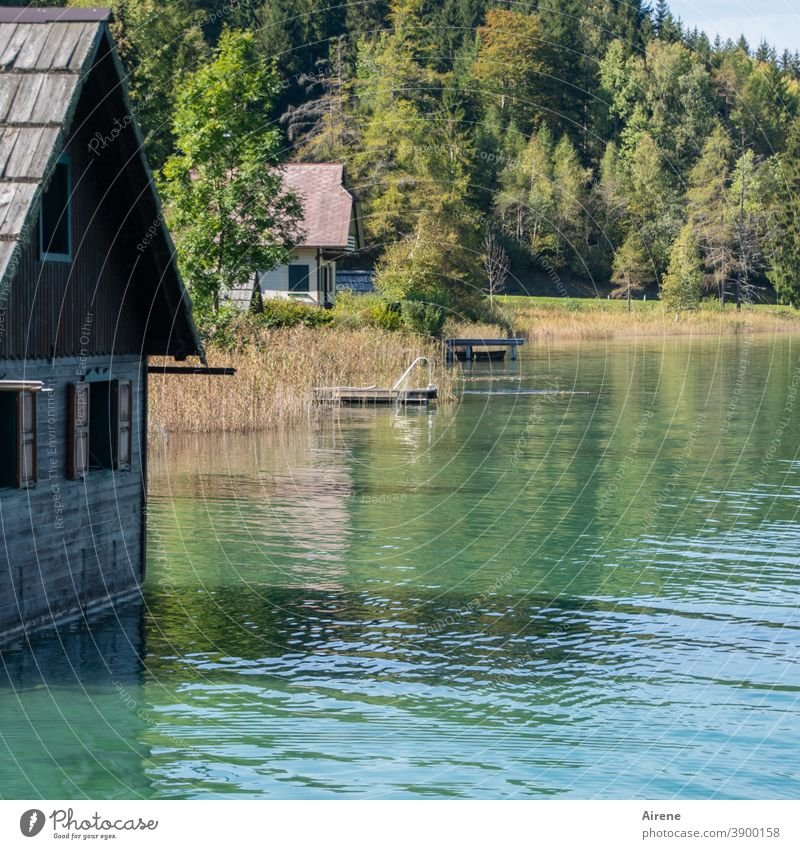 far away from the daily grind Lake Lakeside Calm Loneliness Water Boathouse Hut Wooden house Idyll Nature Relaxation Vacation & Travel Contemplative Summer