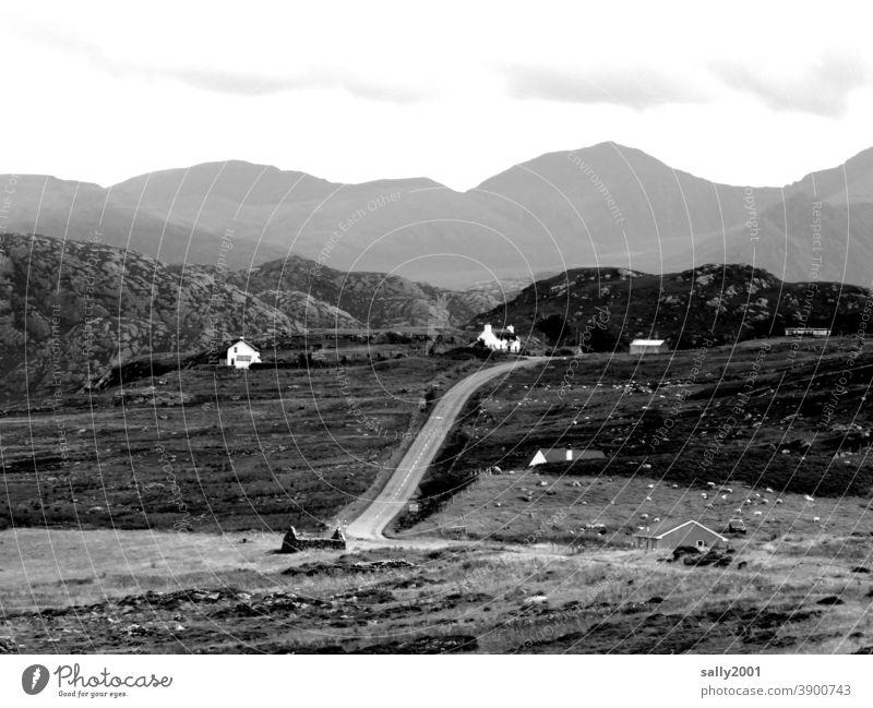 Neighborhoods ... with distance ... Landscape houses neighbourhood wide Scotland settlement Mountain Highlands Great Britain Hiking Loneliness Exterior shot