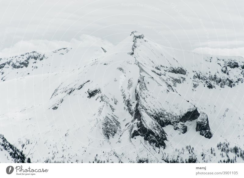 Styrian and Lungau limestone peak in winter, snow-covered mountain top Mountain summits Point Steep Chalk alps Alps Clouds Vacation & Travel Nature Peak