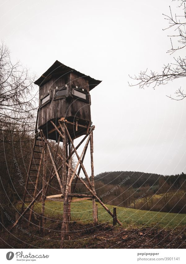 Hunter high seat Hunting Blind Nature Landscape Exterior shot Colour photo Sky Field Forest Tree Wood Green Clouds Vantage point Meadow Ladder Tower