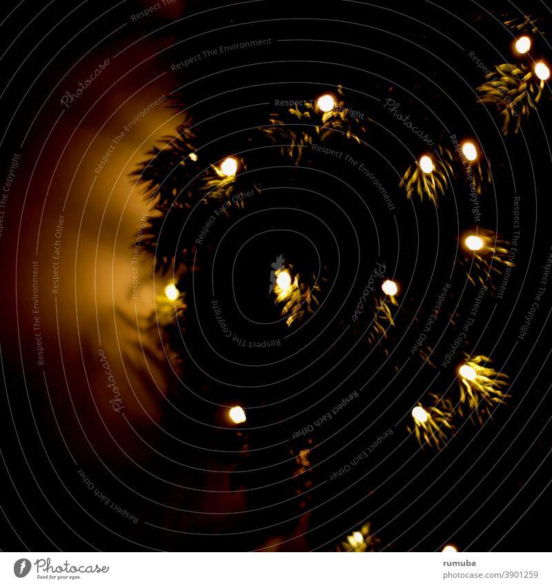 fir, candles, advent Christmas & Advent Night Fairy lights Romance Tradition Joie de vivre (Vitality) Religion and faith Peace Expectation Popular belief Hope