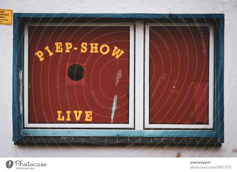 Piep-Show old bird shop Window Window pane Living or residing Pane Red Typography typography Letters (alphabet) Bird Characters Glass Slice Detail