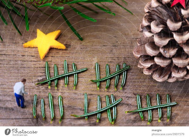 Christmas, December 24 Christmas Eve How many days left? Miniature mini worlds Stars fir needles Fir branch Fir cone Decoration Christmas & Advent