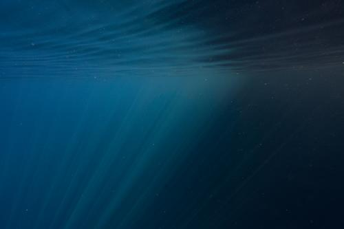 Sunrays in the water Underwater photo play of lights Water Blue Dive Ocean Deep Vacation & Travel
