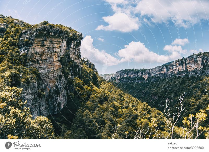 Landscape of the Prades mountains, in Tarragona, Spain. la febró prades catalonia spain without people outdoor medium copy space color landscape horizontal top