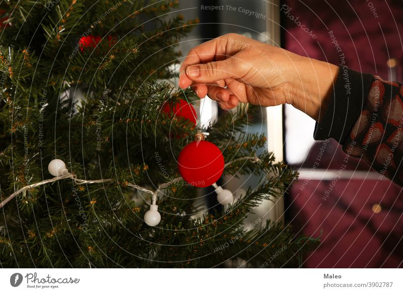 Beautiful red balls are hung on the Christmas tree decorating home tradition golden hand background beautiful black bokeh bright celebrate celebration christmas