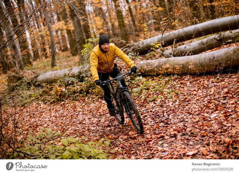 Young man biking through autumn forest bicycle bike nature ride cyclist biker lifestyle outdoor sport exercise trail mountain action extreme recreation tree