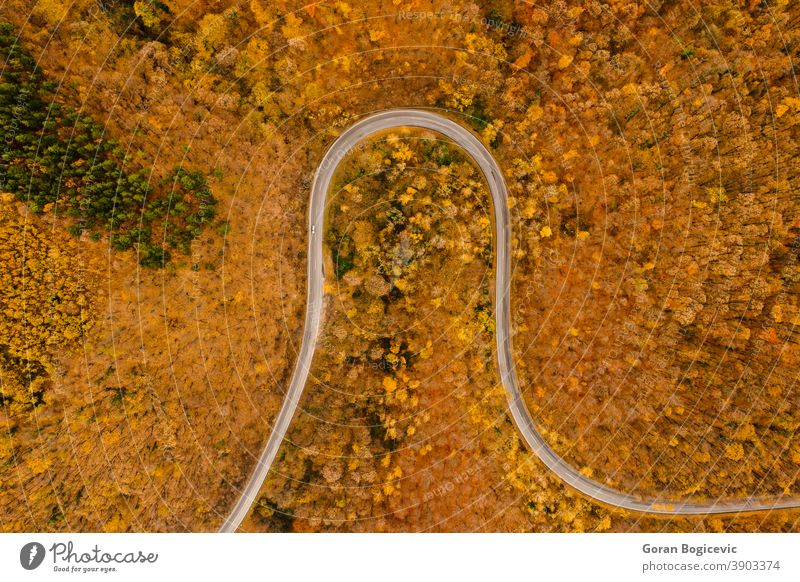 Aerial view of autumn forest road aerial outdoor beautiful nature landscape trees natural travel green drone above fall foliage flight rural colorful scene