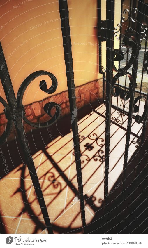 Arnstadt Fence Grating Portal wrought-iron Metal gate Copy Space top Central perspective Shadow Deserted Exterior shot Colour photo ornaments Sunlight