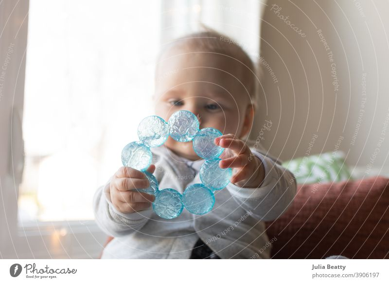 6 month hold baby holding teething ring with both hands in front of face chew chewing six months 6 months infant grasp explore sensory water cold plastic toy