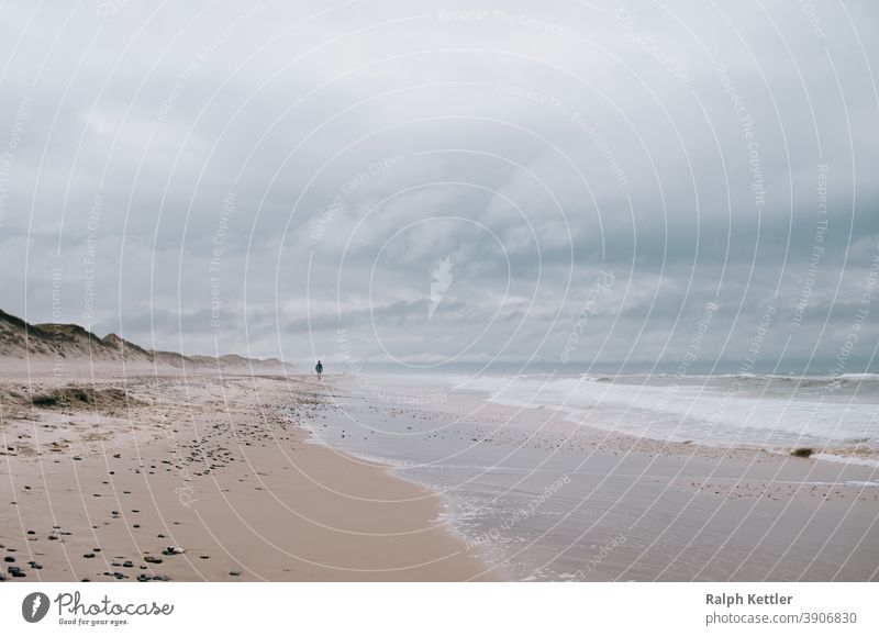 Walker on the beach of the North Sea in Denmark Ocean Beach Gale vacation hikers Digital holidays travel Landscape coast Nature Clouds Waves