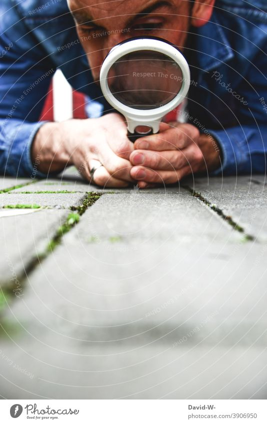 in search of clues / detective with magnifying glass Magnifying glass trace track search dedective Observe Investigate Search Tracks Discover
