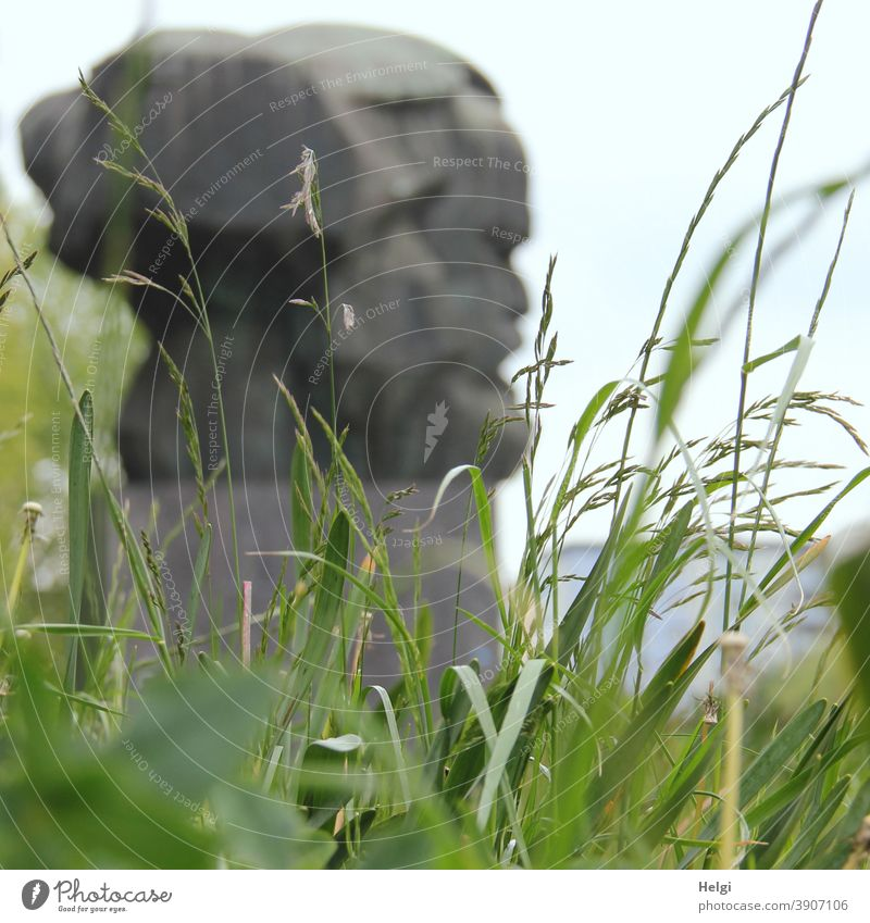 Karl Marx statue out of focus behind grasses from frog perspective Grass Worm's-eye view Chemnitz policy state Capitalism marxism Monument Landmark Charles Marx