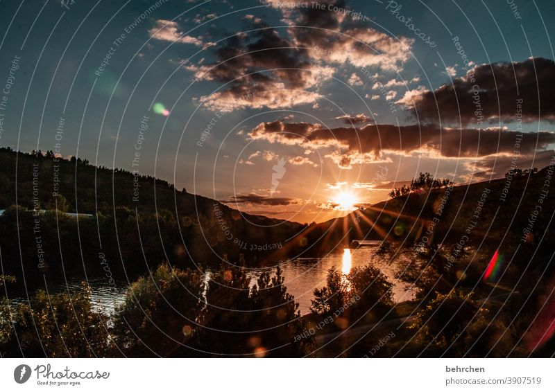 sunlight mosel evening solar star Moselle valley Mosel (wine-growing area) River bank Freedom Wanderlust Water Reflection Vineyard Mountain Back-light Summer