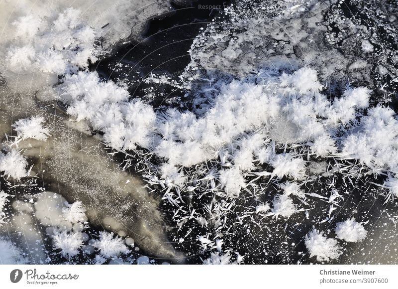 Ice and snow crystals ice crystals Winter Seasons Frost chill Frozen surface Cold Exterior shot Nature Freeze Deserted Hoar frost Snow Ice crystal White