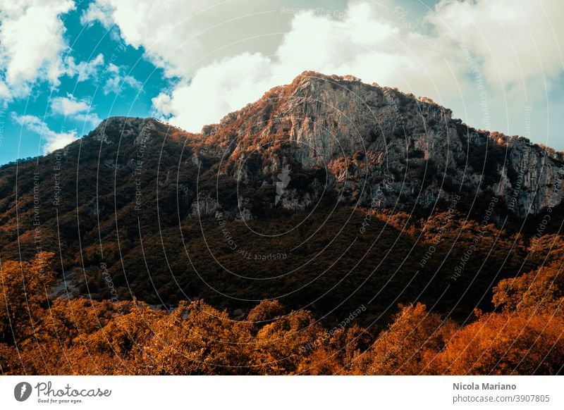 Mountains in fall October Wood Light (Natural Phenomenon) Nature Exterior shot Landscape colorful