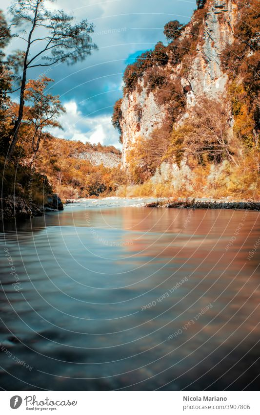 Fall mountain and river long exposure photo Long exposure silk water fall Wood Autumn Water Exterior shot Colour photo To fall Leaf Deserted River Forest