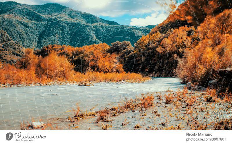 Fall mountain and river long exposure photo Long exposure silk water fall Wood Autumn