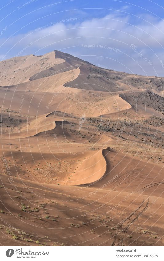 Megadunes overlooking Sumu Brun Jaran Lake E.shore-Badain Jaran Desert-Inner Mongolia-China-1163 Mysterious Lakes Desert Badanjilin Shamo Gobi Desert