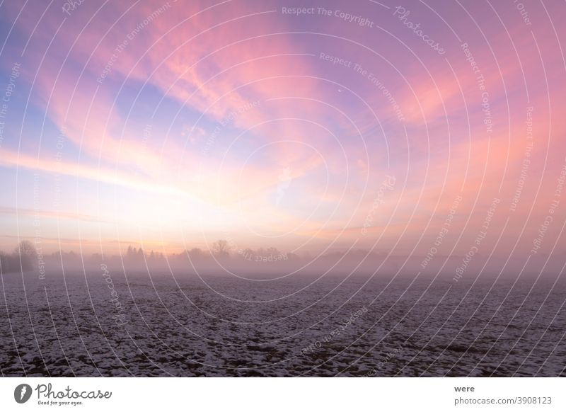 Sunrise over snow covered meadow with ground fog in winter cloud cold colorful colorful clouds copy space landscape mist morning morning mist morning sun nature