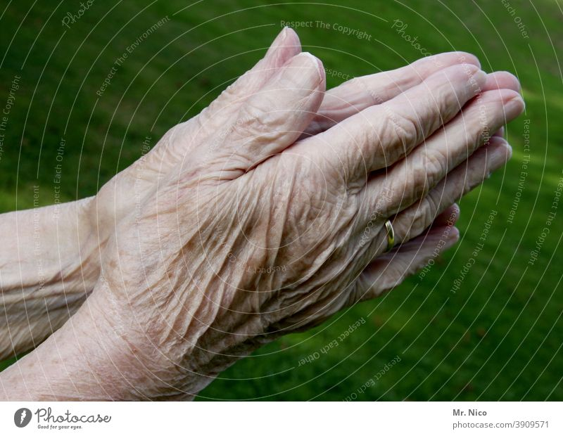 Contemporary History I experienced hands Old Senior citizen Fingers Female senior Grandmother 60 years and older Life crease praying hands Personal hygiene