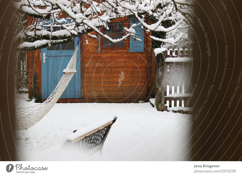 Garden in winter tepid Wooden house Snow White Winter silent Calm Nature Peaceful Cold Frost Ice Day Exterior shot Deserted Subdued colour Colour photo