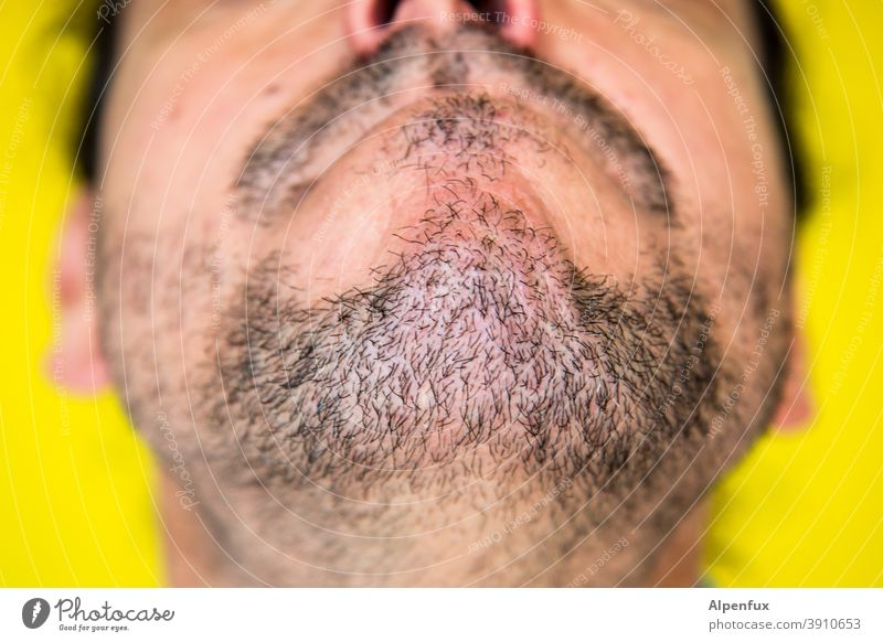 Caucasian chin Facial hair Beard hair Stubble Close-up Human being Man Mouth Masculine Face Adults Designer stubble Chin Hair and hairstyles Colour photo Nose