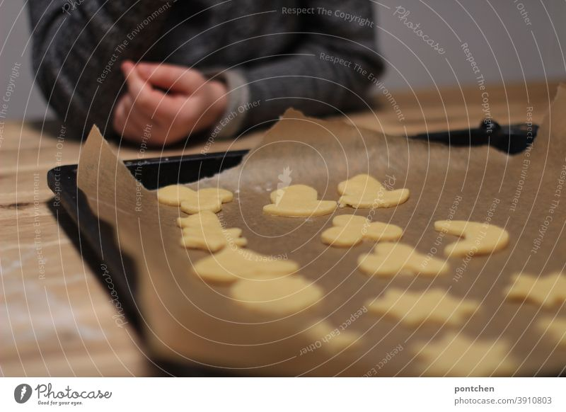 A toddler sits in front of a baking tray with cut-out cookies. Pre-Christmas time, baking, tradition Cookie Baking outdo sb. Toddler Hand Baking tray Tradition