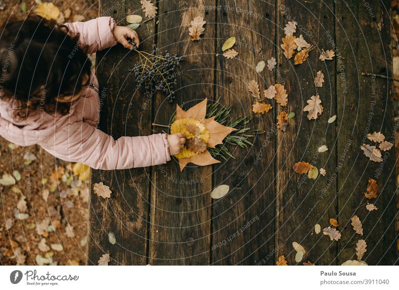 Child playing with autumn leaves Autumn Autumnal Autumn leaves Autumnal colours fall Winter Nature foliage Automn wood Day Colour photo Leaf Environment