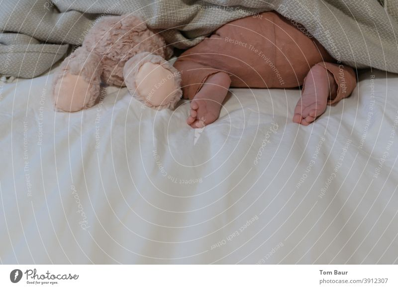 We play hide and seek - baby is next to a teddy bear with his head under the covers, only his bottom and bare feet are visible. Baby Teddy bear Duvet baby feet