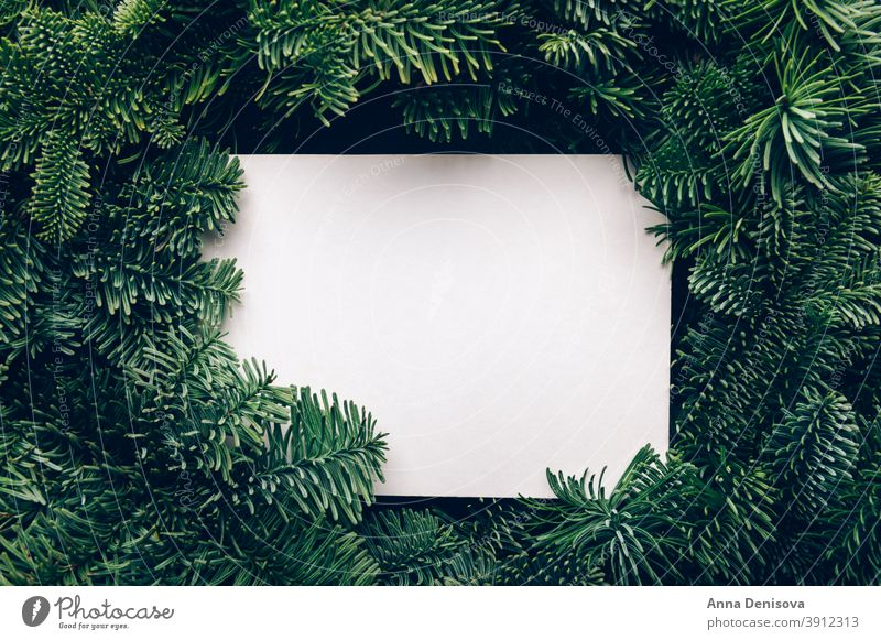 Frame from Xmas tree branches with mock up xmas christmas frame card creative background decoration holiday minimal winter green white trend festive empty above