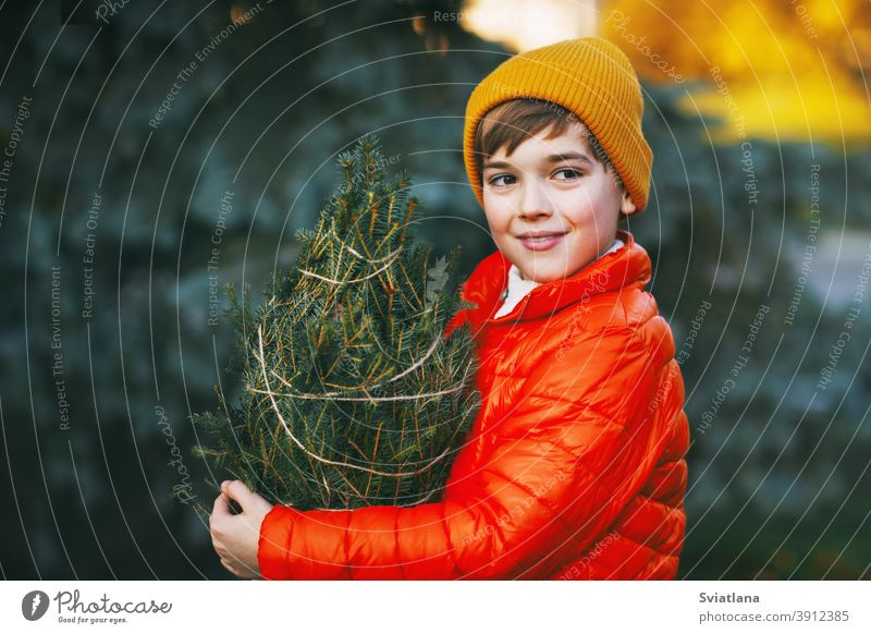 A boy in a bright orange jacket and yellow hat holds a purchased Christmas tree in his hands, smiles and looks into the distance. Shopping for the holiday. Preparing for Christmas, New Year