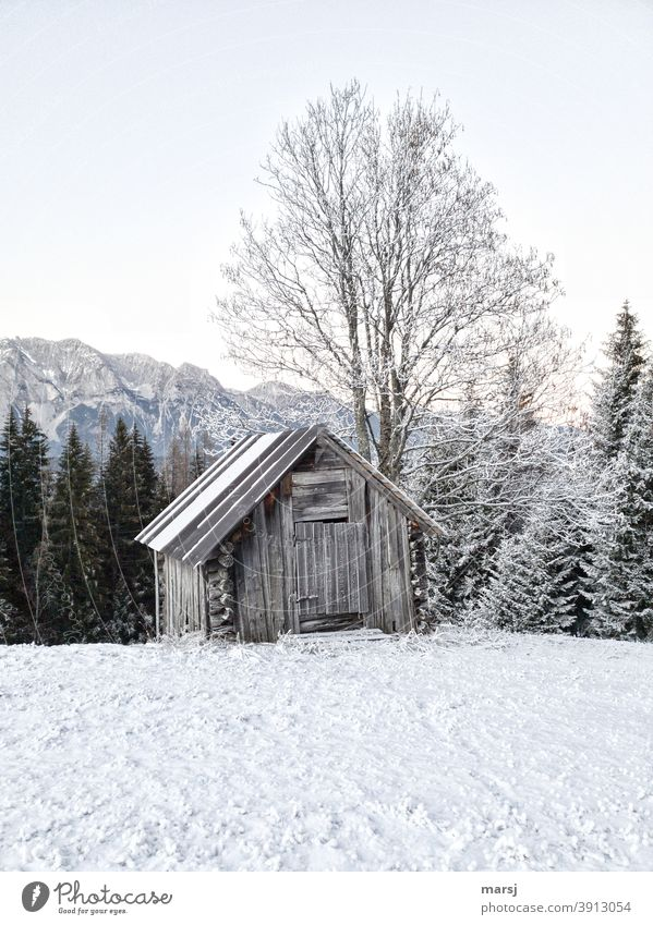 Lightly snowed wooden hut with tree. Snow in the foreground, mountains and forest in the background. morningfrost Cold Exceptional Old haystack Hut Frost Ice