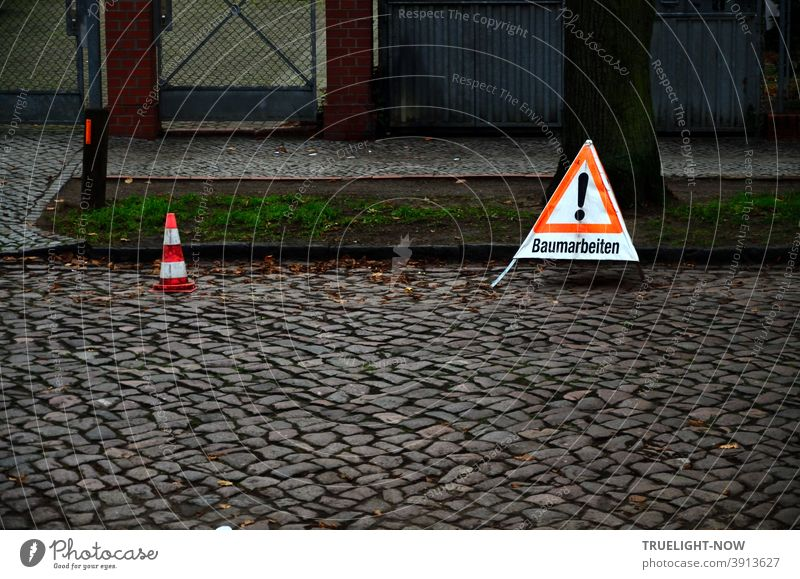 At the edge of a dark cobblestone road in front of a tree trunk on the green strip a red and white warning triangle with black exclamation mark and the inscription tree work, next to it a small red and white warning cone.