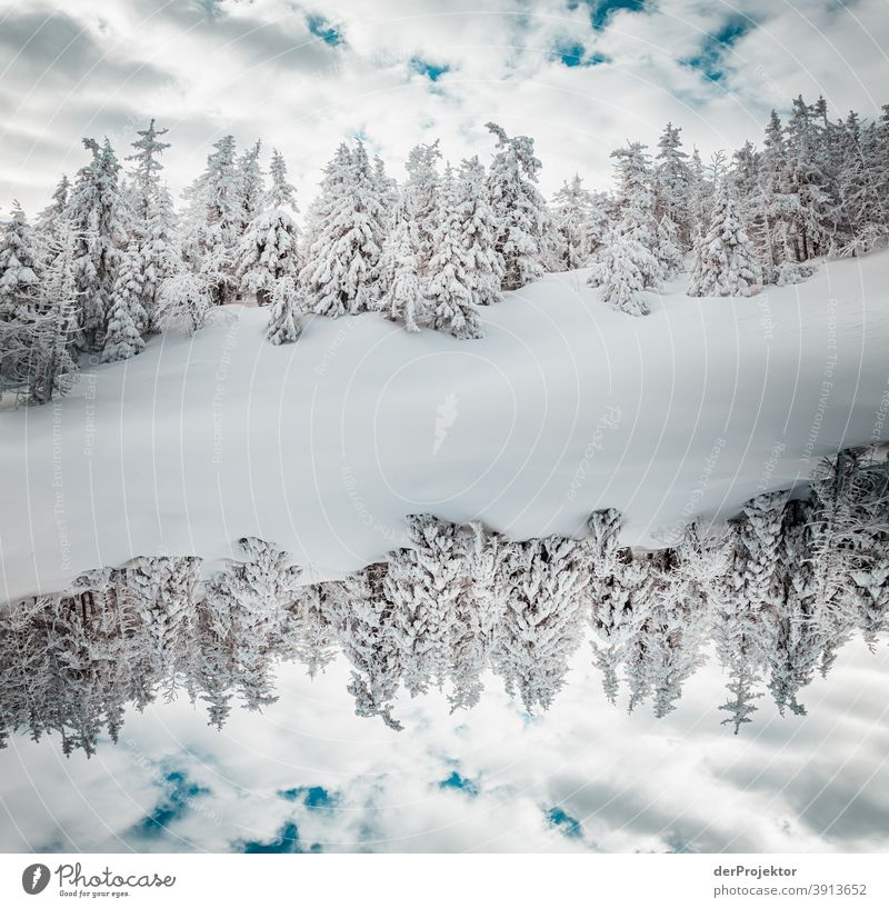 Double Harz world in the winter on the Brocken Joerg farys National Park nature conservation Lower Saxony Winter Experiencing nature Nature reserve
