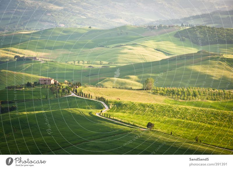 Green Tuscan hills Nature Vacation & Travel Beautiful Summer Landscape House (Residential Structure) Grass Idyll Tourism Europe Vantage point Hill Italy