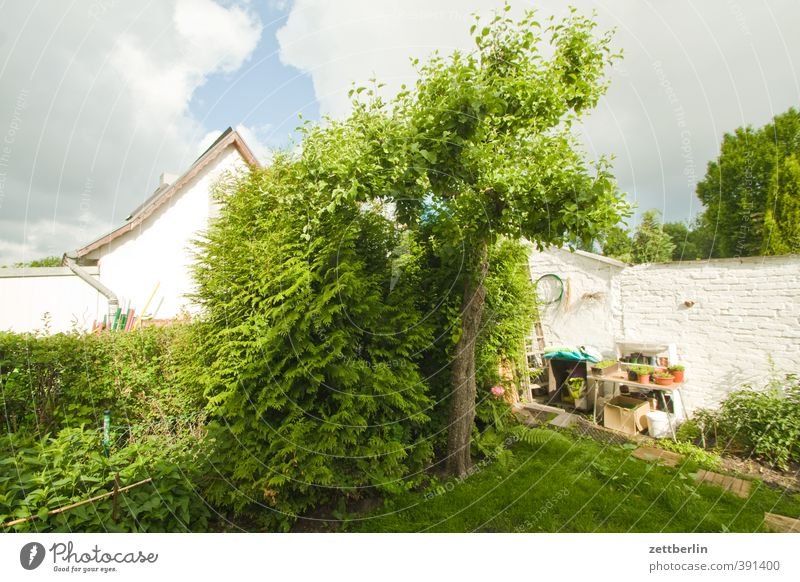 Sky Nature Beautiful Summer Tree Joy House (Residential Structure) Environment Wall (barrier) Garden Flat (apartment) Idyll Climate Lifestyle Living or residing